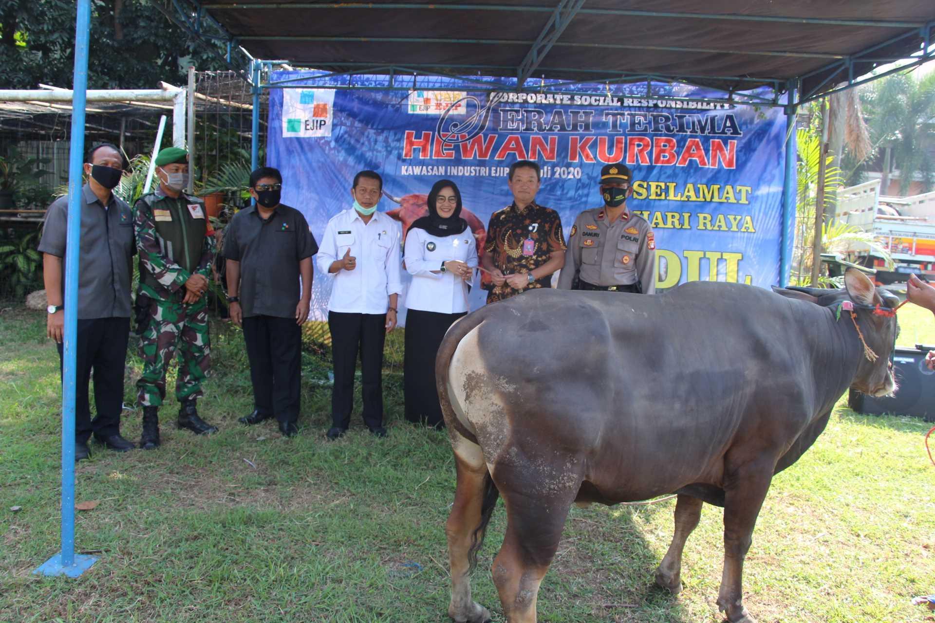 CSR : EJIP Distribute 20 Ied Adha Qurban 1441H